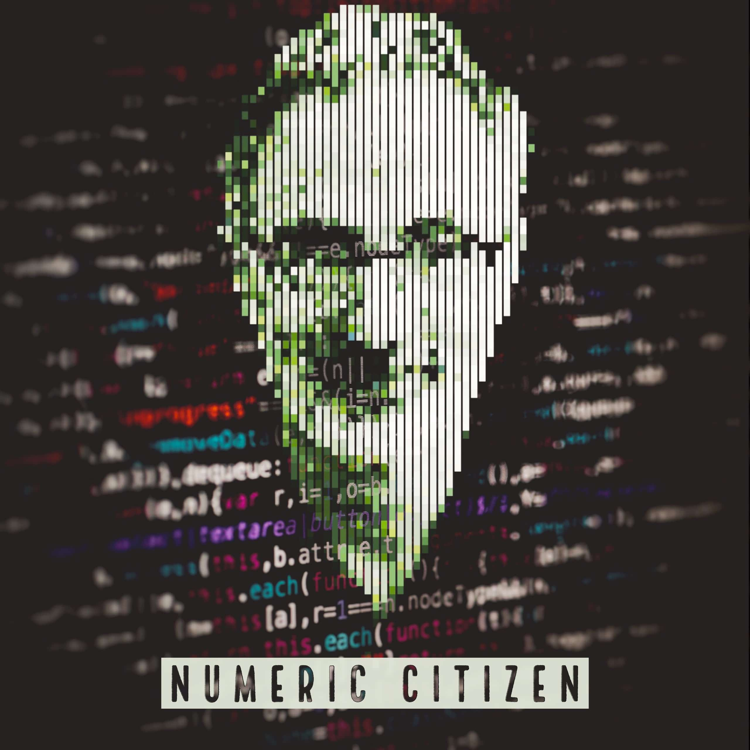 Numeric Citizen  - cover